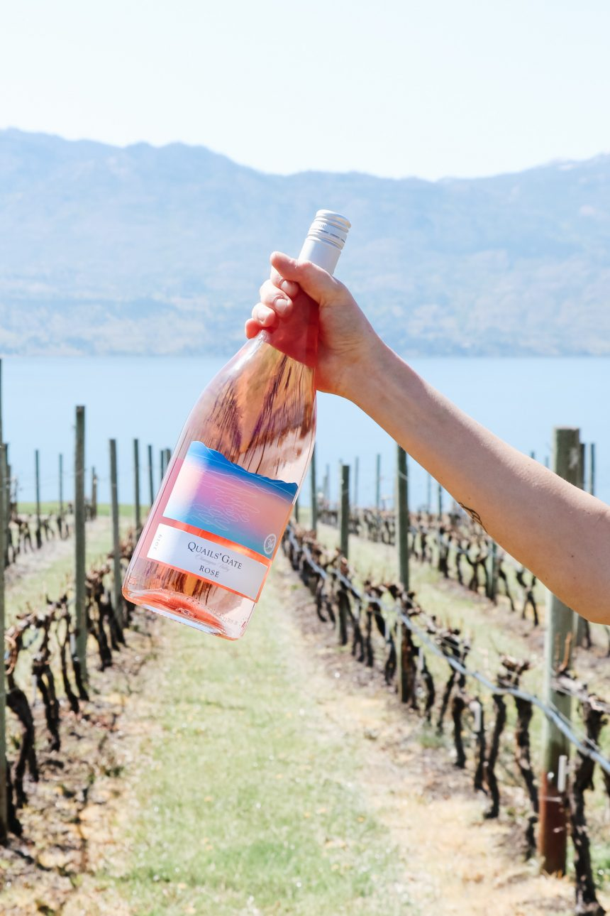 Sales of Quails' Gate Limited Edition Magnum Rosé to Support Local Hospitality Charity